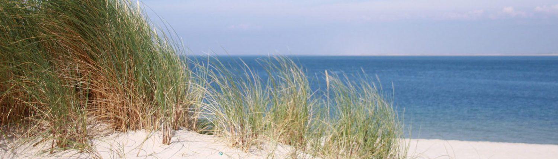 Nordsee Duene